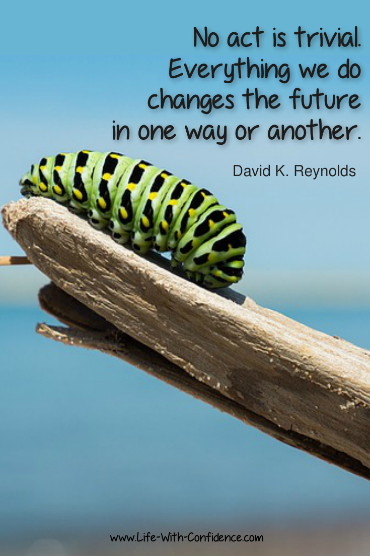 David K Reynolds Quote - No act is trivial. Everything we do changes the future in one way or another.
