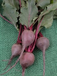 blush beet red? There are things you can do